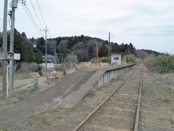 20110403nekosuki